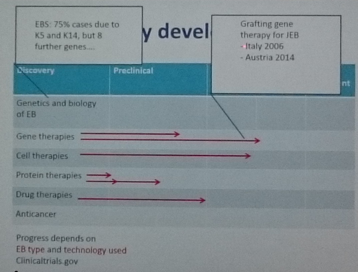目前世界EB團隊研發及目標發展狀況進度說明